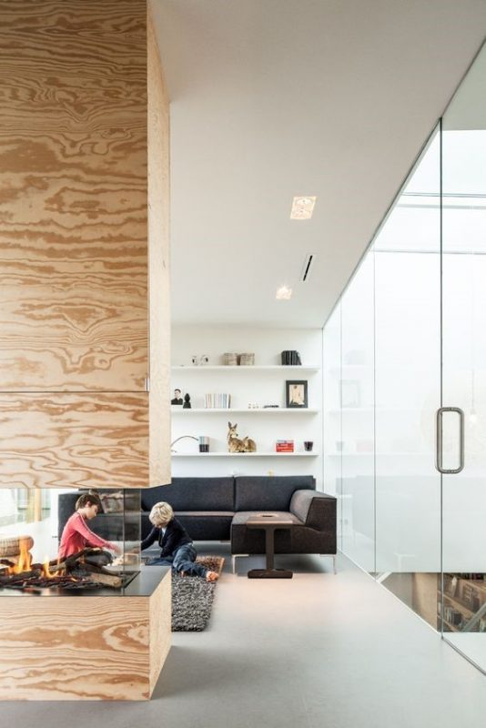 wood-fireplace-glass-doors