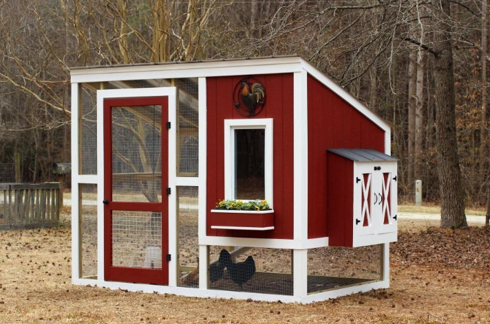 Custom Chicken Coop Plans