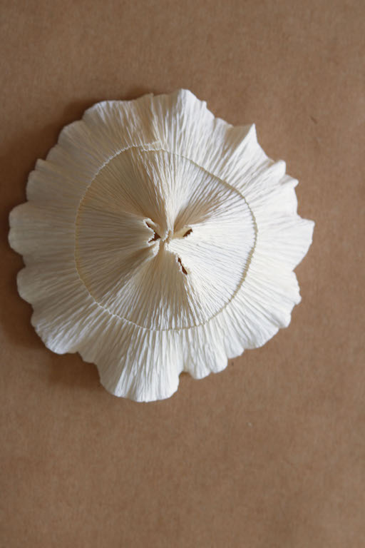 Paper Mushroom Tutorial by Kate Alarcón for Design*Sponge