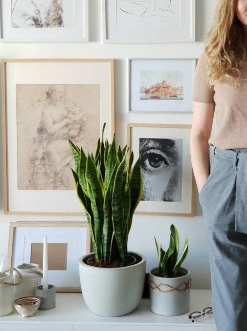 Anna Caroline Design Studio 210