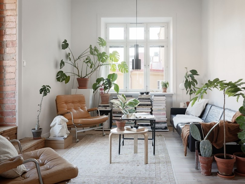 Scandinavian bohemic apartment