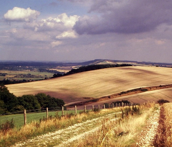 How to have a peaceful holiday in the South Downs