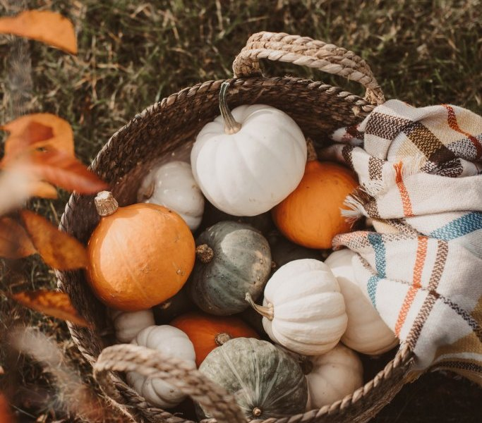 Autumn Season Produce