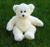 Tofu Bear