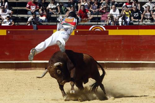 Bull-leapers15