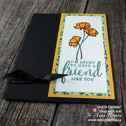 stampin up brusho crystal colour watercoloring