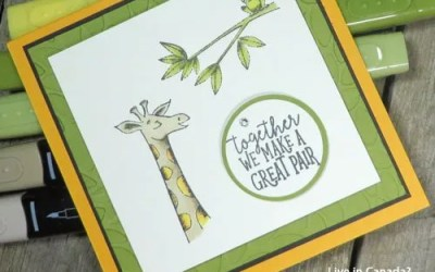 Tips for Detailed Colouring with Stampin Up Alcohol Markers