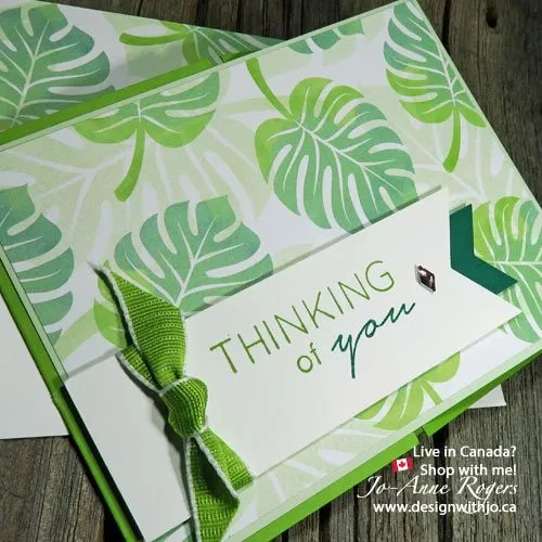use stampin write markers to colour rubber stamps