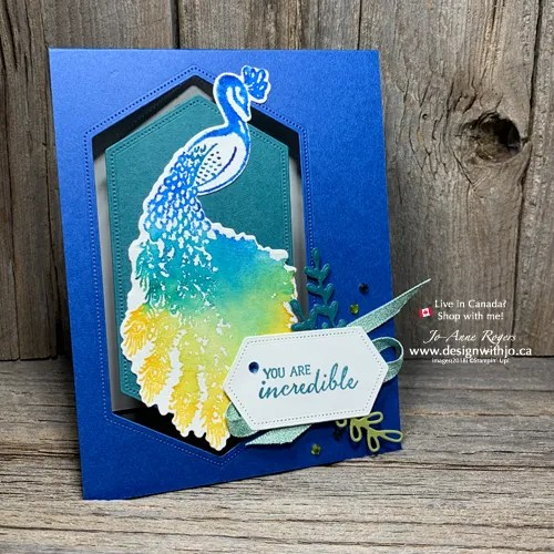 Stampin Write Markers Watercolour Spritz Technique and Noble Peacock Stamps Are a Perfect Combination