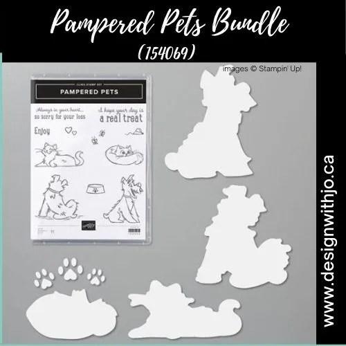 Super Cute Handmade Cat Card for International Cat Day