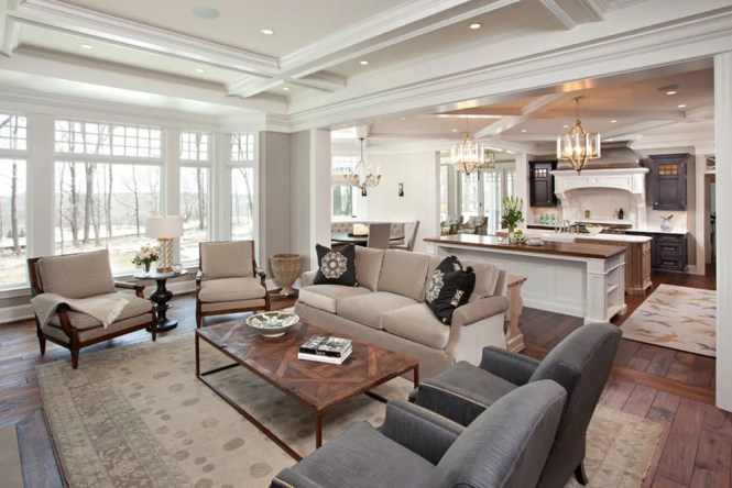 Gallery Of Modern Traditional Living Room Ideas Unique On Inspirational Home Designing