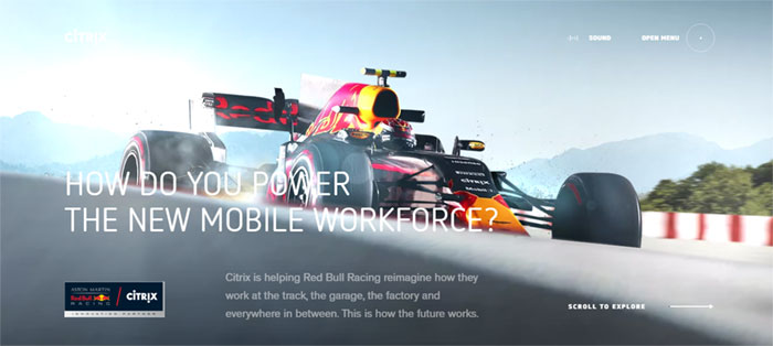Red-Bull-Racing-Citrix Web Design Basics: What Makes A Good Website