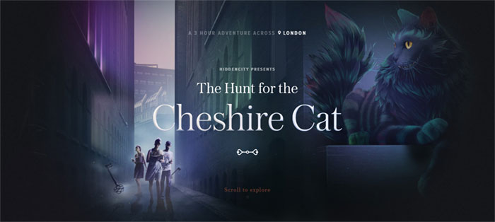 The-Hunt-for-the-Cheshire-C Web Design Basics: What Makes A Good Website