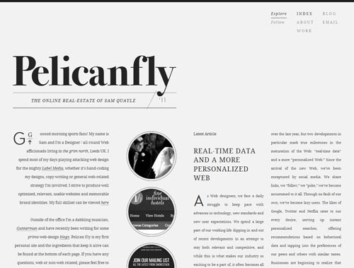 pelicanfly.co.uk - Minimalist site