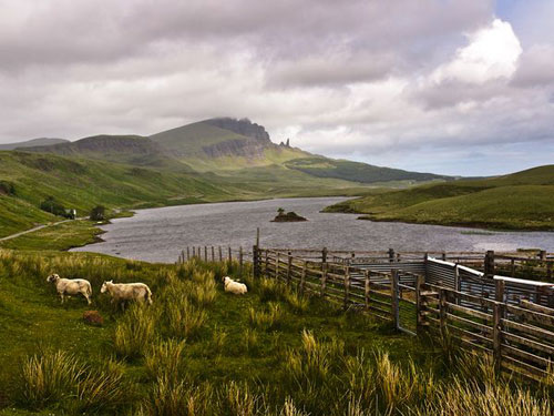 Scottish Highlands Photography