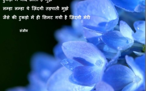 sad shayari in hindi ,शायरी, love shayari in hindi, best shayari,hindi shayari sad, Best Hindi Sad Shayar, latest shayari collection,हिंदी शायरी, शायरी