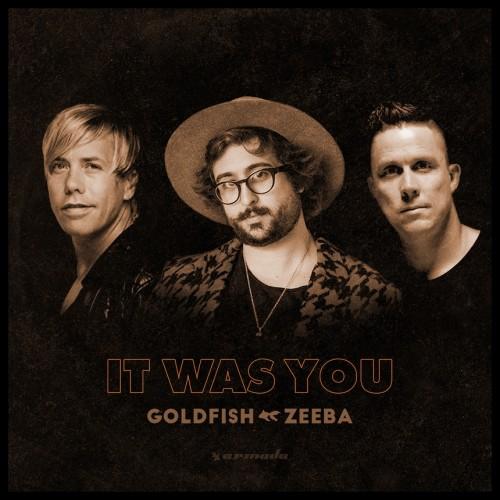 Artwork Goldfish  It Was You With Zeeba ile ilgili görsel sonucu