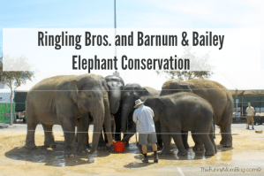 Ringling Bros. and Barnum & Bailey Elephant Conservation