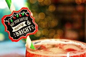 Santa's Sleigh Spritzer Mocktail Recipe