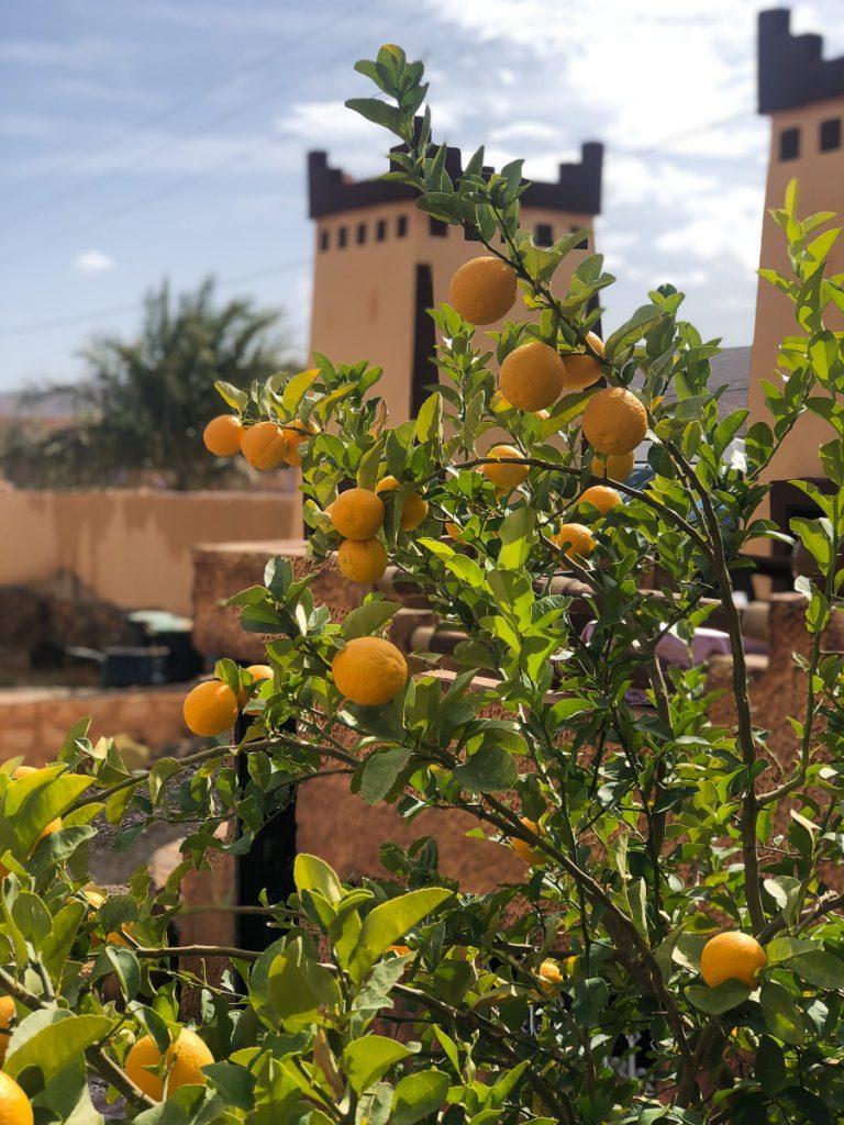 Tinghir Morocco