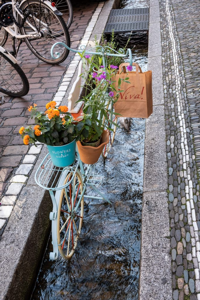 Freiburg im Breisgau , Tyskland Germany, Baden Württemberg, pastel, pastell, gate, kanal, canal, street, bike, bicycle, bächle