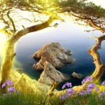 Beautiful Landscape Animated Wallpaper