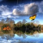 Butterfly Lake Animated Wallpaper