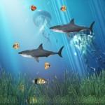 Coral Reef Aquarium Animated Wallpaper