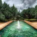 Dream Pools Animated Wallpaper