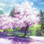 Cherry Blossoms Animated Wallpaper