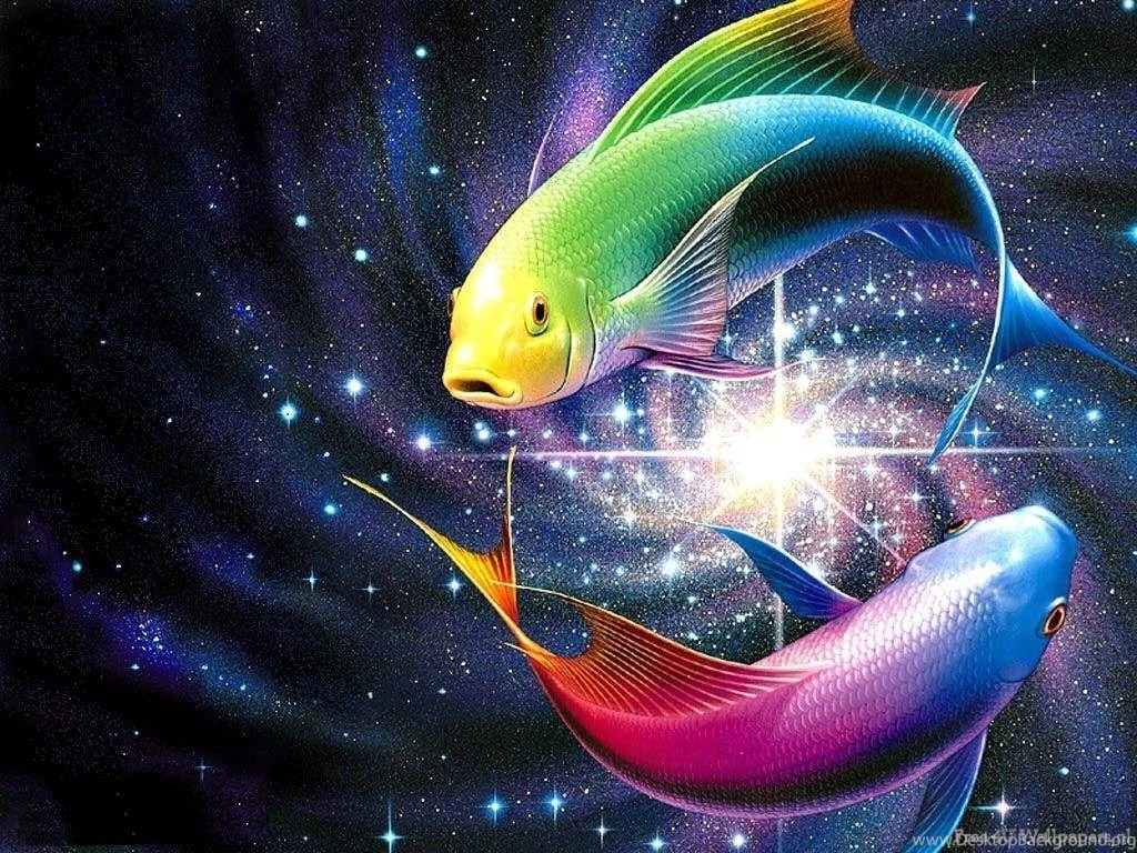 3d fish life in color wallpapers (2584842) fanpop desktop background
