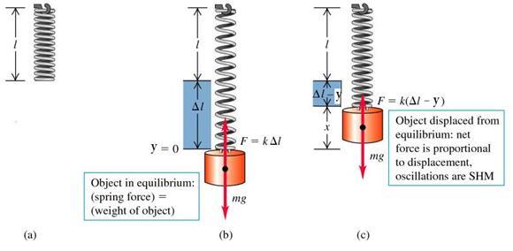 al-qasim-trust-simple-harmonic-motion