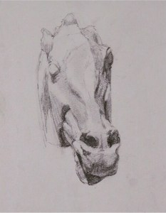esmond Mac Mahon - Fine artist - London - Equestrian art - Parthenon horse