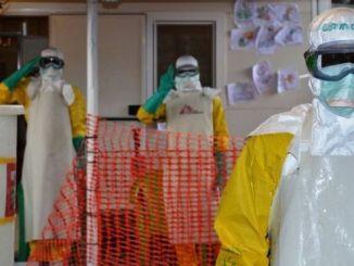 La peor crisis de ébola se vivó entre 2014 y 2015