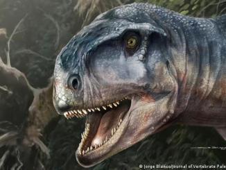 """Impresión artística del dinosaurio carívoro llamado """"el que causa miedo"""""""