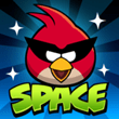ANGEY BIRS SPACE LOGO