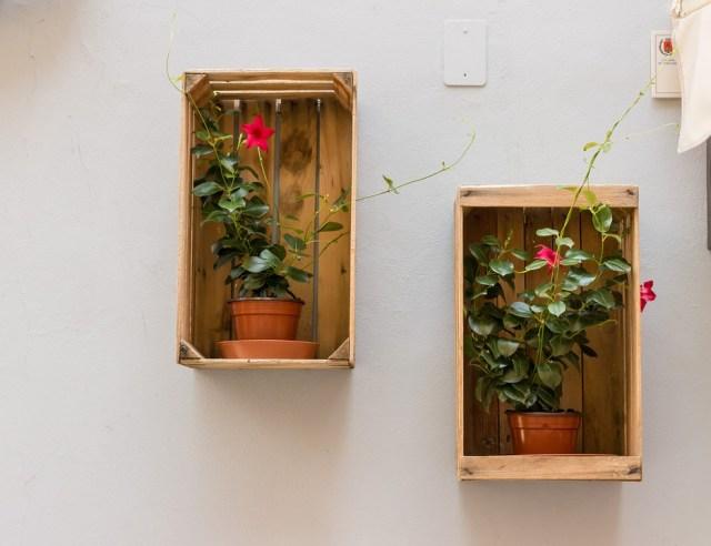 flowerpot-935972_960_720