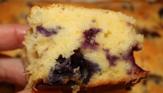 Blueberry Mango Bars