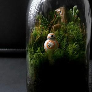 terrarium décoration geek