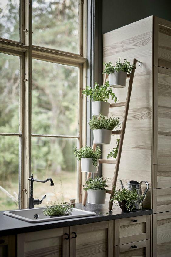 jardin herbes aromatique intérieur