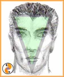 Visage-triangle-bas