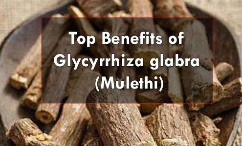Top-Benefits-of-Glycyrrhiza-glabra-(Mulethi)