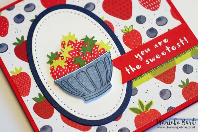 De Stempelcoach: Fruit Basket from Stampin' Up!