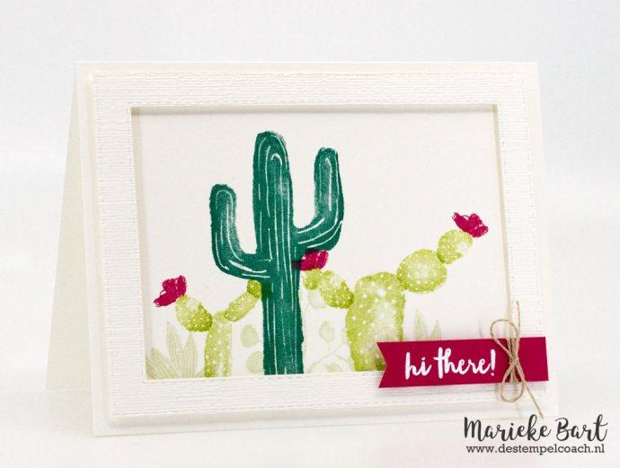 Flowering Desert by Stampin' Up!