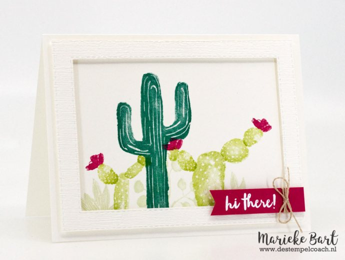 Flowering Desert by Stampin' Up!