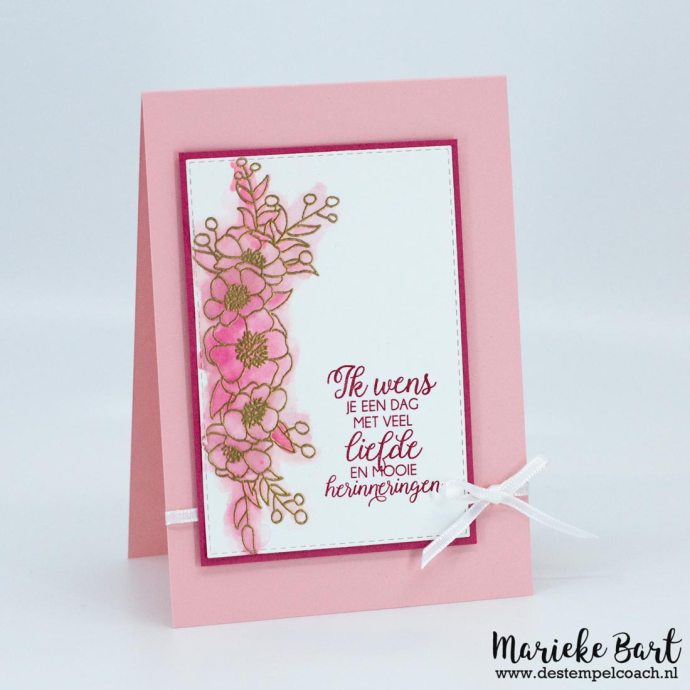 Bloom & Grow by Stampin' Up!