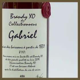 BRANDY-XO-GABRIEL-THUMB