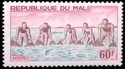 Pêche à l'épuisette au Mali
