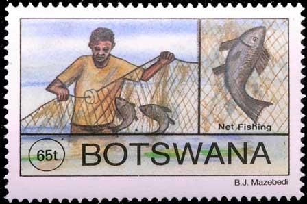 Filet dormant au Botswana.