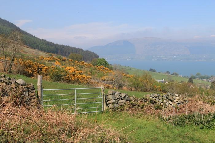 Irlande J4 – Petit tour sur la colline des Lepreuchauns…